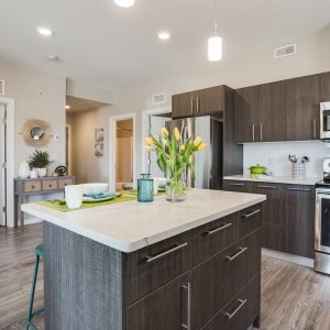 modern condo with open kitchen and island